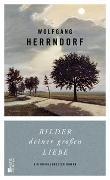 Cover-Bild zu Bilder deiner großen Liebe von Herrndorf, Wolfgang