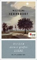 Cover-Bild zu Bilder deiner großen Liebe (eBook) von Herrndorf, Wolfgang