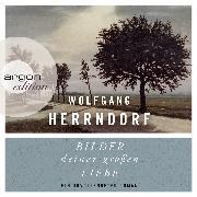Cover-Bild zu Bilder deiner großen Liebe - Ein unvollendeter Roman (Audio Download) von Herrndorf, Wolfgang