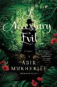 Cover-Bild zu Necessary Evil von Mukherjee, Abir