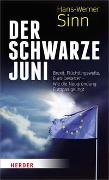 Cover-Bild zu Der Schwarze Juni von Sinn, Hans-Werner