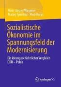 Cover-Bild zu Wagener, Hans-Jürgen: Sozialistische Ökonomie im Spannungsfeld der Modernisierung