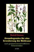 Cover-Bild zu Grundlegendes zur Erweiterung der Heilkunst (eBook) von Steiner, Rudolf