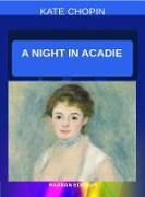 Cover-Bild zu A Night in Acadie (eBook) von Chopin, Kate