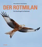Der Rotmilan von Aebischer, Adrian