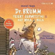 Cover-Bild zu Dr. Brumm feiert Geburtstag / Dr. Brumm auf Hula Hula (Audio Download) von Napp, Daniel