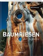 Baumriesen der Schweiz von Brunner, Michel