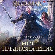 Cover-Bild zu Sword of Destiny. Witcher (Audio Download) von Sapkowski, Andrzej