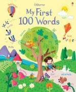 Cover-Bild zu My First 100 Words von Brooks, Felicity