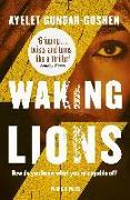Cover-Bild zu Waking Lions (eBook) von Gundar-Goshen, Ayelet