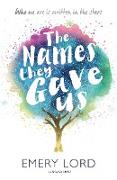 Cover-Bild zu The Names They Gave Us (eBook) von Lord, Emery