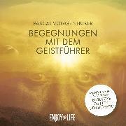Cover-Bild zu Begegnungen mit dem Geistführer (Audio Download) von Voggenhuber, Pascal