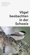 Vögel beobachten in der Schweiz von Schweizer, Manuel
