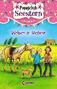 Cover-Bild zu Ponyclub Seestern (Band 4) - Welpen in Gefahr (eBook) von McKain, Kelly
