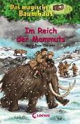 Cover-Bild zu Das magische Baumhaus (Band 7) - Im Reich der Mammuts von Pope Osborne, Mary
