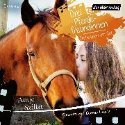 Cover-Bild zu Drei Pferdefreundinnen - Diebesjagd am Set (Audio Download) von Szillat, Antje