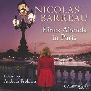 Cover-Bild zu Eines Abends in Paris (Audio Download) von Barreau, Nicolas