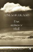 Cover-Bild zu Das steinerne Floß (eBook) von Saramago, José
