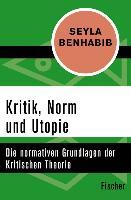 Cover-Bild zu Kritik, Norm und Utopie (eBook) von Benhabib, Seyla