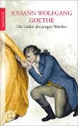 Cover-Bild zu Die Leiden des jungen Werther von Goethe, Johann Wolfgang