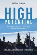 Cover-Bild zu High Potential (eBook) von MacRae, Ian