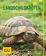 Landschildkröten von Wilke, Hartmut