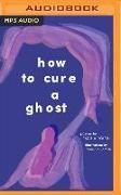 Cover-Bild zu How to Cure a Ghost von Róisín, Fariha