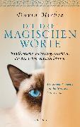 Cover-Bild zu Die drei magischen Worte (eBook) von Michie, David