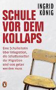 Cover-Bild zu König, Ingrid: Schule vor dem Kollaps