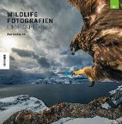 Cover-Bild zu Wildlife Fotografien des Jahres - Portfolio 29 von Natural History Museum