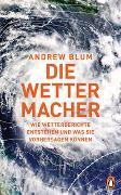 Cover-Bild zu Blum, Andrew: Die Wettermacher
