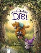 Cover-Bild zu Die zauberhaften Drei (1). Hoggs und der Bärenmut von Dahle, Stefanie