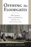 Cover-Bild zu Johnson, Kevin R.: Opening the Floodgates (eBook)