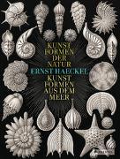 Cover-Bild zu Breidbach, Olaf: Ernst Haeckel