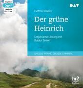 Cover-Bild zu Der grüne Heinrich