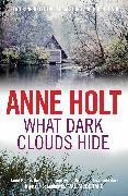 Cover-Bild zu Holt, Anne: What Dark Clouds Hide