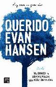 Cover-Bild zu Emmich, Val: Querido Evan Hansen