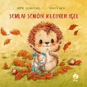 Cover-Bild zu Schoenwald, Sophie: Schlaf schön, kleiner Igel (Mini-Ausgabe)