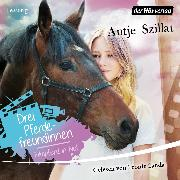 Cover-Bild zu Szillat, Antje: Drei Pferdefreundinnen - Filmpferd in Not (Audio Download)