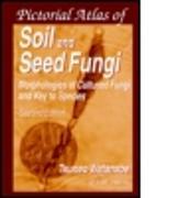 Cover-Bild zu Kimble, John M.: Soils and Global Change