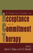 Cover-Bild zu A Practical Guide to Acceptance and Commitment Therapy von Hayes, Steven C. (Hrsg.)