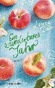 Cover-Bild zu Dave, Laura: Ein wunderbares Jahr (eBook)