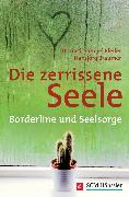 Cover-Bild zu Bräumer, Hansjörg: Die zerrissene Seele (eBook)