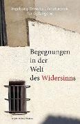 Cover-Bild zu Maelach, J. B.: Begegnungen in der Welt des Widersinns (eBook)
