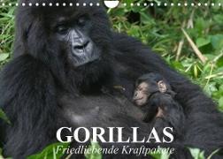 Cover-Bild zu Stanzer, Elisabeth: Gorillas. Friedliebende Kraftpakete (Wandkalender 2022 DIN A4 quer)