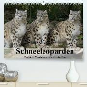 Cover-Bild zu Stanzer, Elisabeth: Schneeleoparden. Perfekte Raubkatzen-Schönheiten (Premium, hochwertiger DIN A2 Wandkalender 2022, Kunstdruck in Hochglanz)