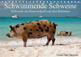 Cover-Bild zu Stanzer, Elisabeth: Schwimmende Schweine / Geburtstagskalender (Tischkalender immerwährend DIN A5 quer)