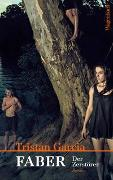 Cover-Bild zu Garcia, Tristan: Faber. Der Zerstörer