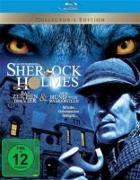 Cover-Bild zu Doyle, Arthur Conan: Sherlock Holmes - Im Zeichen der Vier & Der Hund von Baskerville