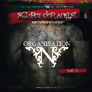 Cover-Bild zu Fehse, Carsten: Feeder 03: Organisation N (Audio Download)